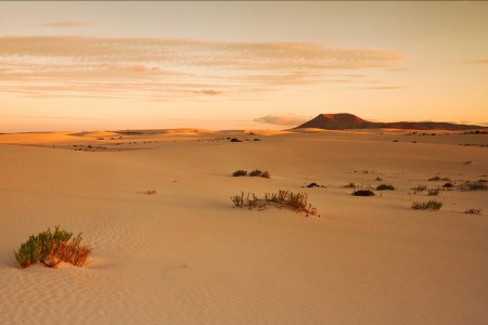 Corralejo Dunes Fuerteventura
