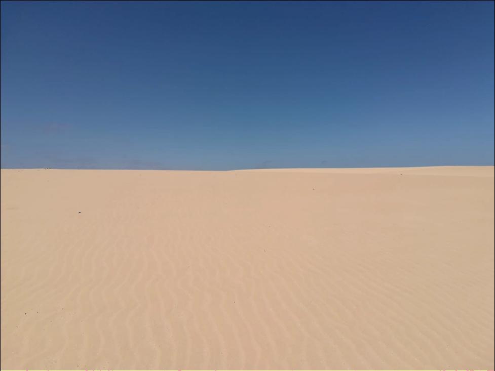 Dunes of Corralejo